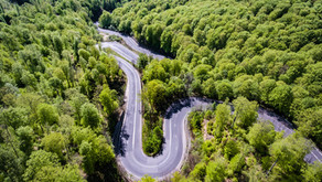 The Winding Road of Organizational Transformation