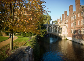 Cambridge Medical School- 1