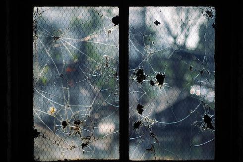 Water Damage Window Repair Company in Atlanta Ga.