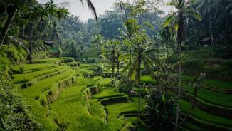 Samantha Brown's Asia: Bali