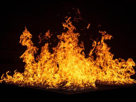 Humedales: la lucha entre el fuego y el agua