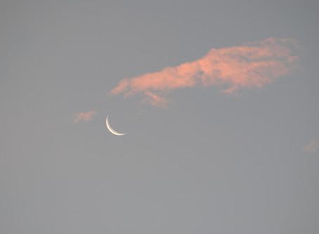 Ton chat ne va pas aimer cette nouvelle Lune...