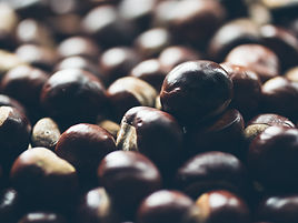 Chestnut and lentil Christmas mix