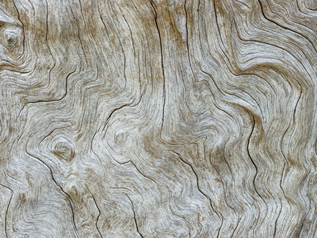Wood reinvented