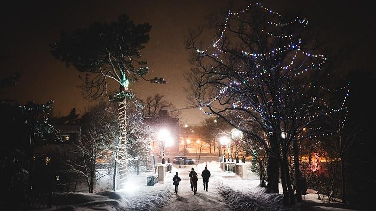 Weihnacht im Wald Donnerstag 1. Adventswochenende