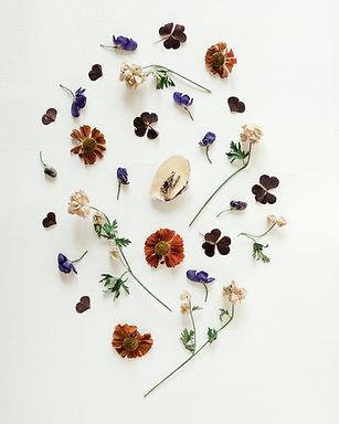 Image by Diana Akhmetianova