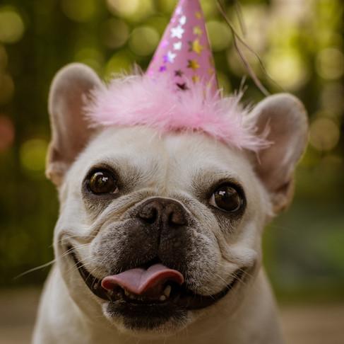 Happy Birthday Debbie!