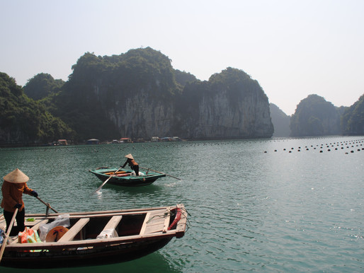 A Day on Lan Ha Bay