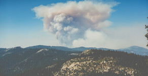 Stay Healthy During Wildfire Season