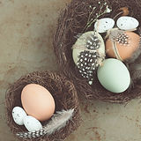 Hawthorn, Easter Decoration