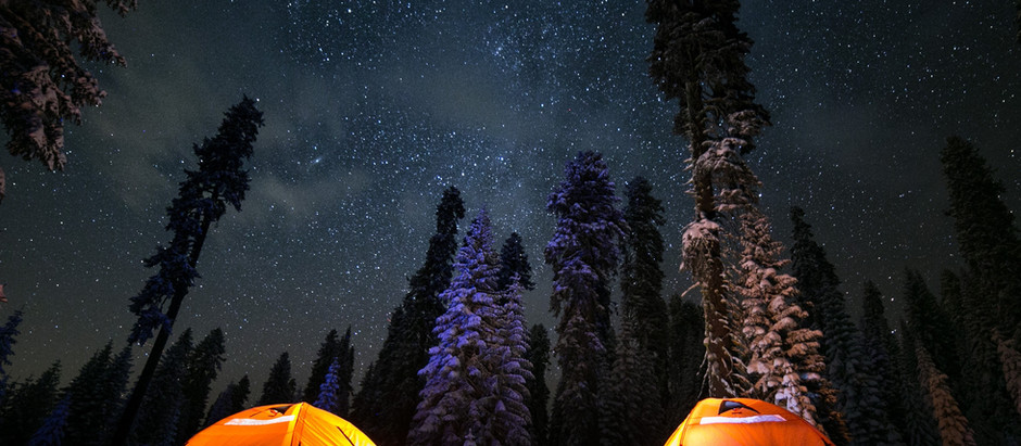 Can I Camp For Free In The Forest?
