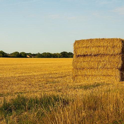 Alfalfa & Grass Mix Hay $7