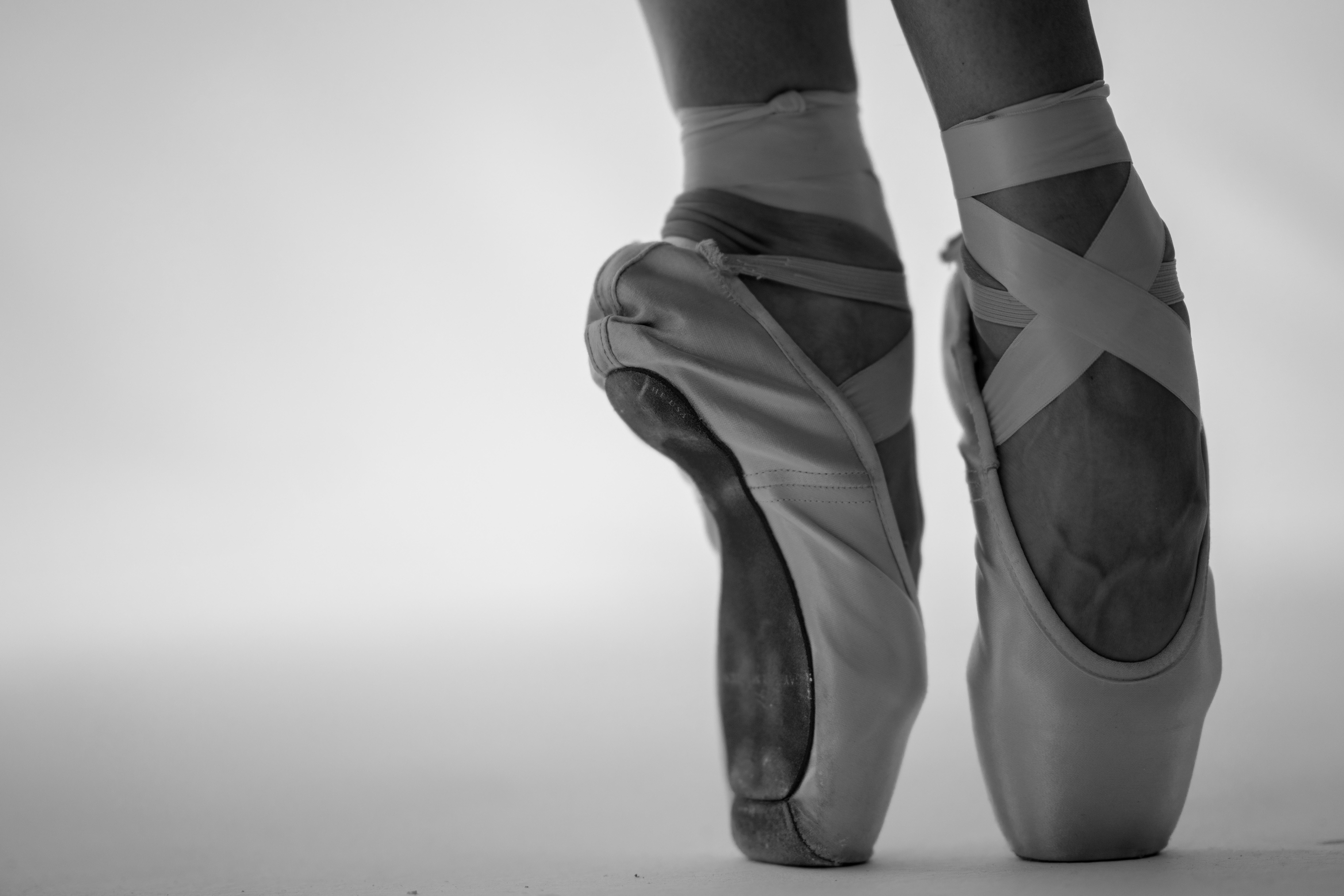 Ages 2+ Ballet Lessons