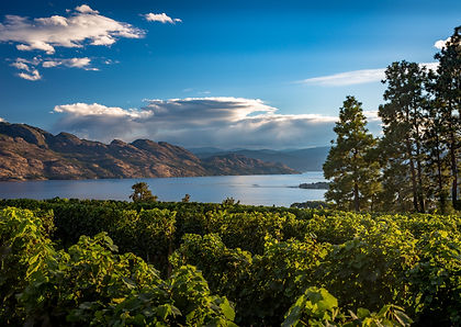 All the highlights of Western Canada in one self-drive tour. Enjoy the wines of Kelowna, a stay at Emerald Lake Lodge, leisure time in Banff and Jasper NP's and drive the Icefields Parkway.  Explore Wells Gray Provincial Park and Whistler before heading over to Vancouver Island's Pacific Rim National Park near Tofino and a final two nights in Victoria.  This is truly the best British Columbia and Alberta have to offer in one great self-drive holiday.