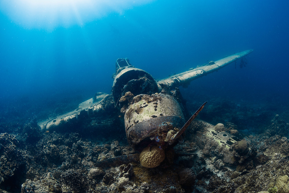 Remains of a wreckage in a seabed in the republic of Palauu