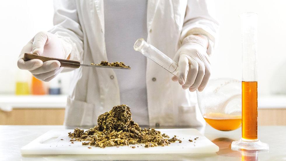 Standard Contamination Test