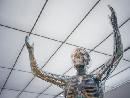 כוכבה סרנגה| 'גוף תלוי' - תהליך היצירה