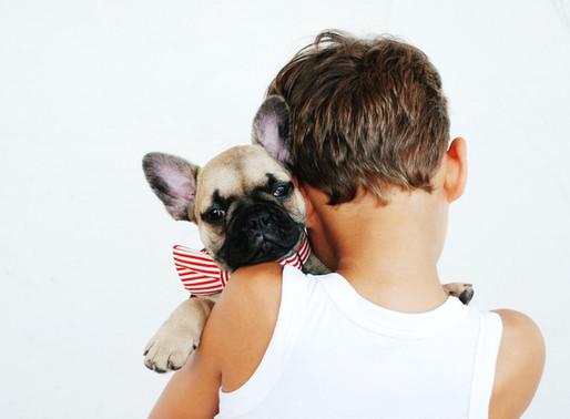 Εκπαίδευση παιδιών για τη φροντίδα ενός σκύλου