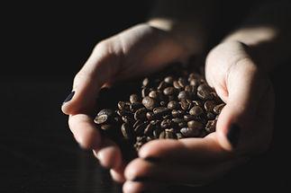 Händer som håller kaffebönor Jakub Kapusnak
