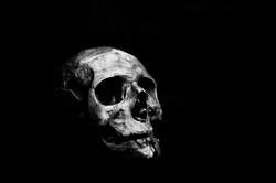 Essay: The Meaninglessness Philosopher: Shakespeare's Hamlet