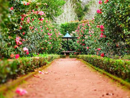 We are God's Garden