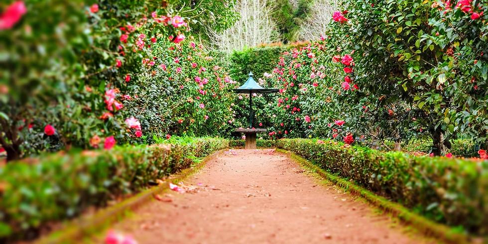 【昼の部11:00〜】「秘密の花園」バーネット