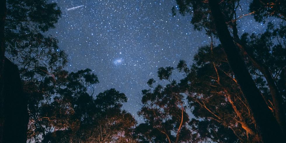 Summer 2020 - Tipi Night Under the Stars!