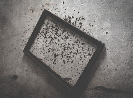 Mold: the Silent Killer