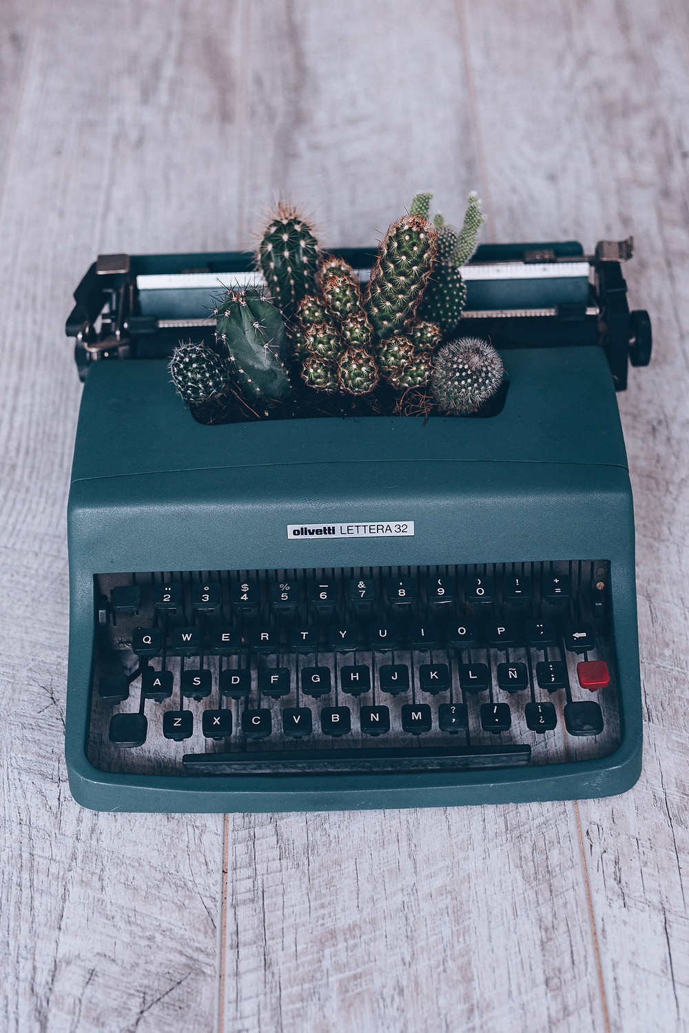 Image of a typewriter with cactus planted in it.