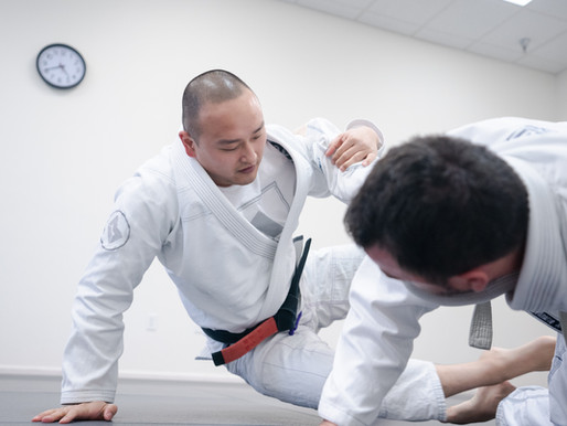 What is BJJ Report?