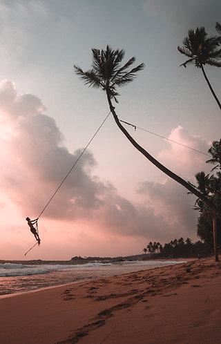Explore Sri Lanka - 8 Days 7 Nights tour