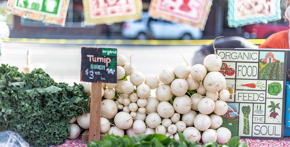Hakurei Salad Turnip