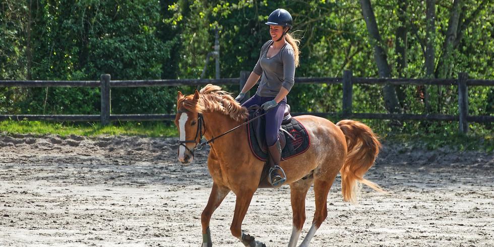 Horse Riding Course-November