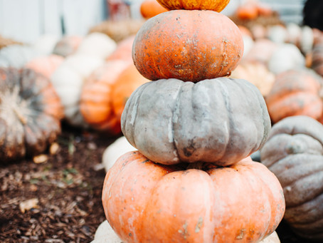Five Fun (and Different) Ways to Enjoy Halloween