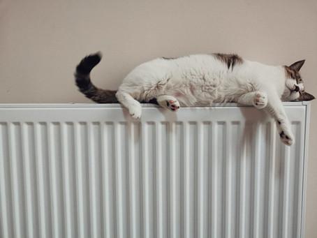 Hvorfor bør du vurdere oppvarmingsløsning din nå?
