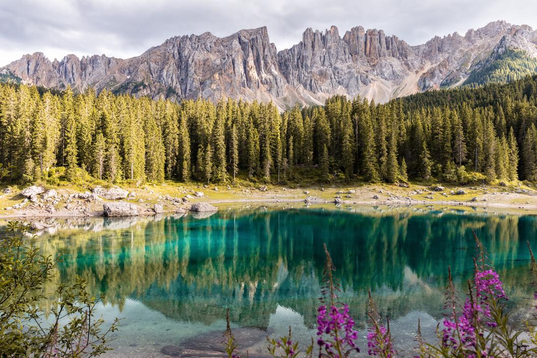 Image by Riccardo Chiarini
