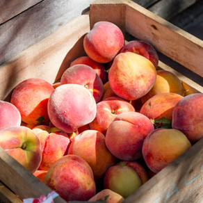 Peaches, Blueberries, Lattice, Oh My!