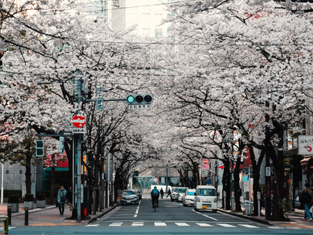 Let's ask to Eshan #3 How to take a local bus in Japan?