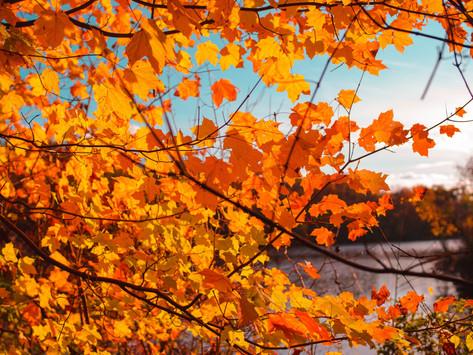 10 Best Fall Destinations in the U.S. East Coast Version