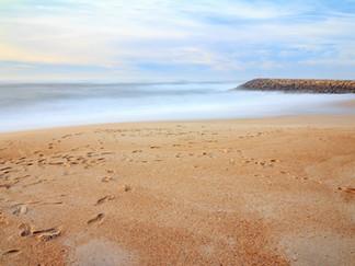 Article partenaire : séjour insolite au Portugal(Ria d'Aveiro, Madère et...)
