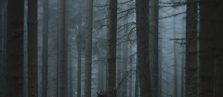 Random 'Word' Generator Short Story Challenge Part 2: A Prayer in the Forest