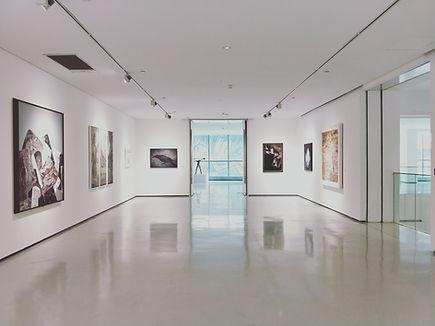 סיור וירטואלי לגלריות ומוזיאונים