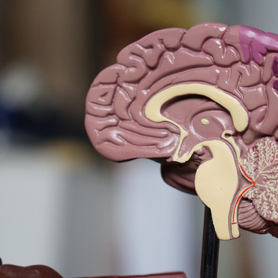 Prediction of Alzheimer's Found in Writing Tests