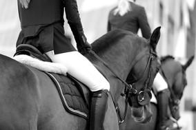 Equine Herpesvirus 1 - CES Valencia Spring Tour abgesagt, Pferde für FEI Turniere gesperrt