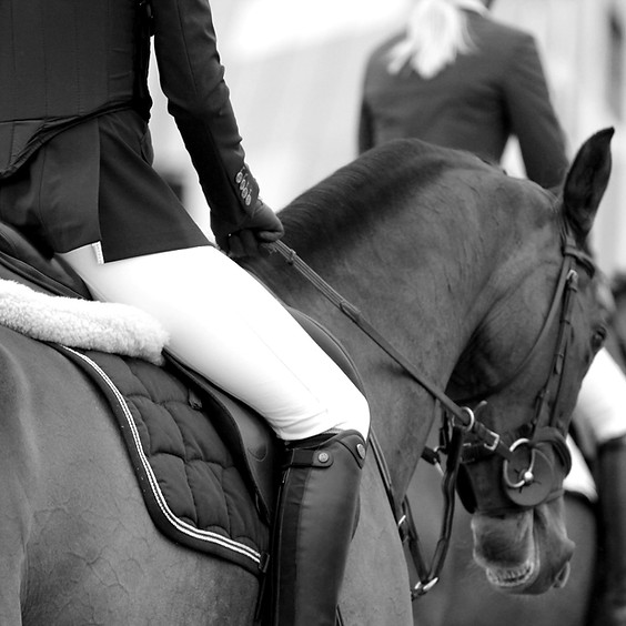 National Breeders Championship Show