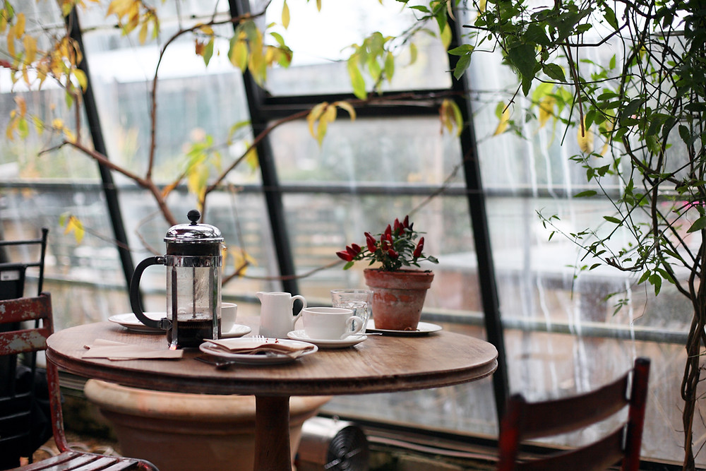 coffee pot on table in room with wall of windows and plants