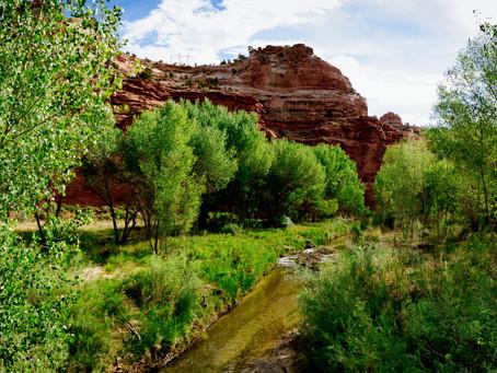 Escalante Adventure Trip, April 22, 2021 (Southern Utah)