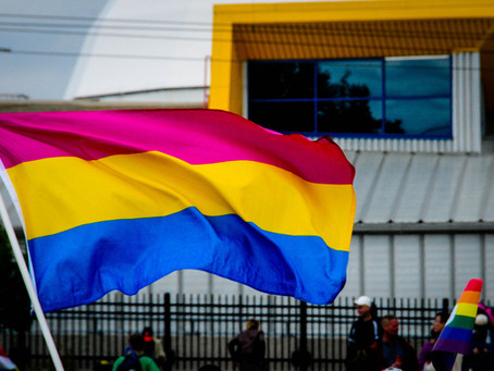 Pride Flags: The Color of our Community