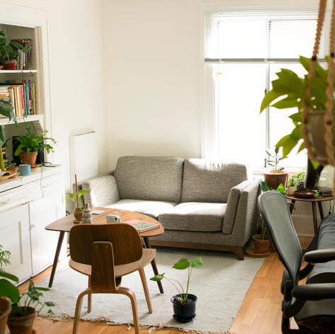 Lesson 9: Clutter, House Plants, & Environment