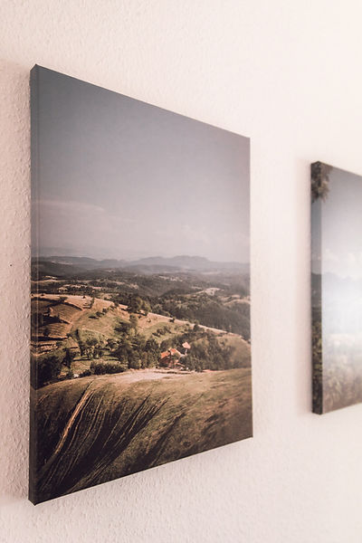 Image by Bianca Ackermann